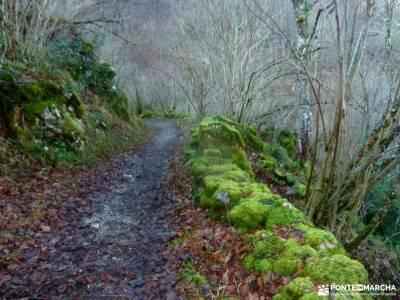 Parque Natural y Reserva de la Biosfera de Redes;senderismo costa brava viajes puente constitucion t